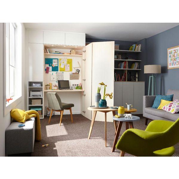 am nager un coin bureau dans un placard. Black Bedroom Furniture Sets. Home Design Ideas