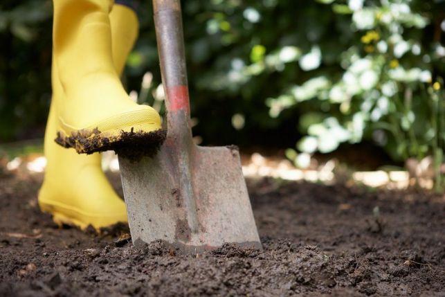 Analyser la terre d'un jardin