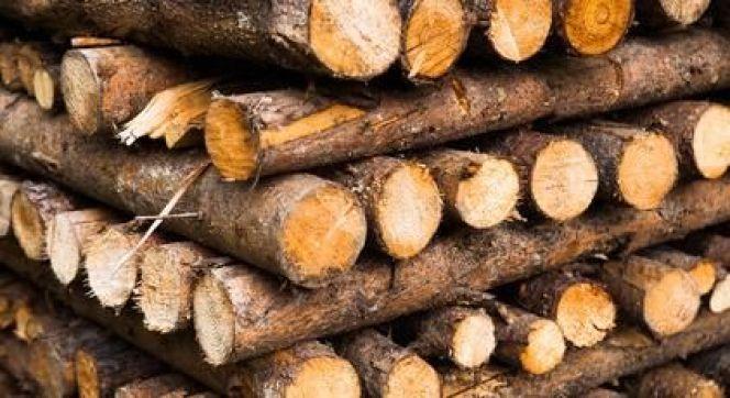 Approvisionner un poêle à bois avec des bûches et bûchettes