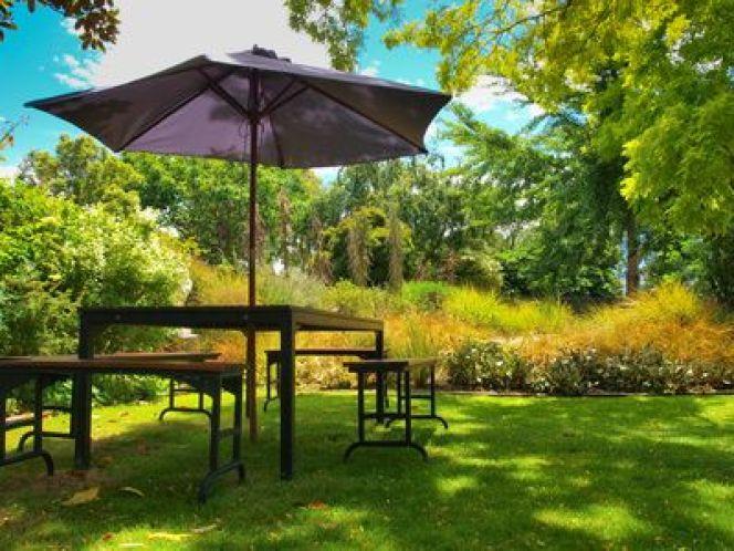 arbres du voisin qui g nent la vue et l ensoleillement. Black Bedroom Furniture Sets. Home Design Ideas
