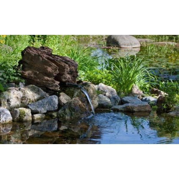 Bassins et fontaines de jardin le guide pratique for Le jardin voyageur peter brown