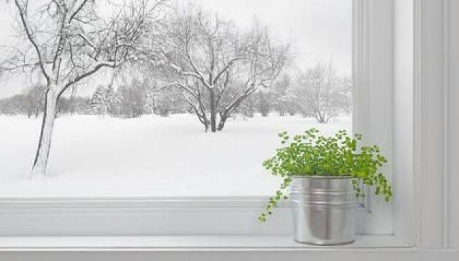 Calfeutrage des fenêtres pour une meilleure isolation