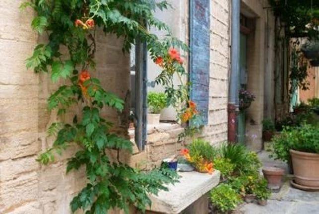 Canicule, comment faire pour garder une maison fraiche ?