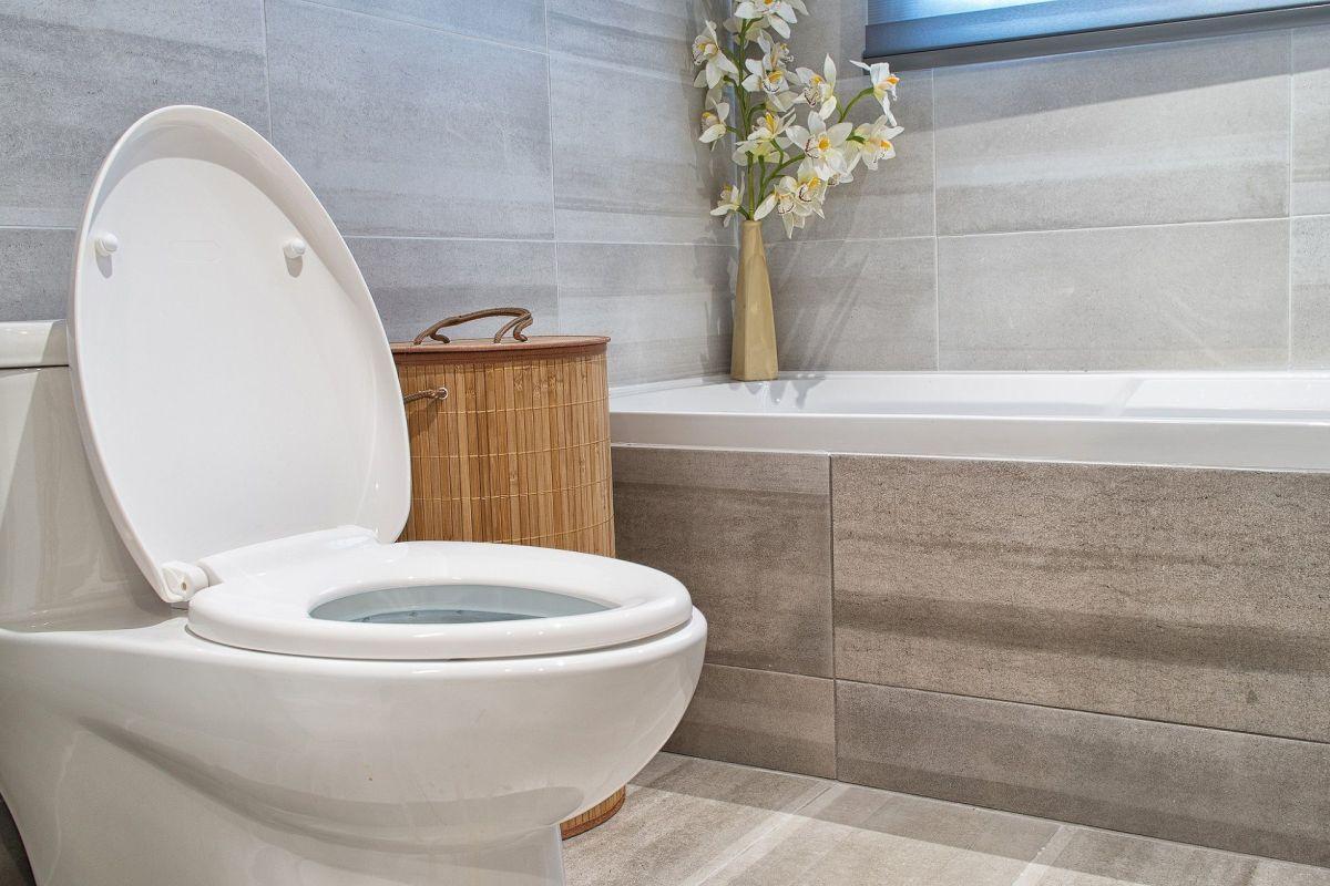 Idee Papier Peint Wc comment aménager des toilettes : quelques idées déco