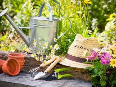 Comment aménager un jardin en milieu aride/sec ?