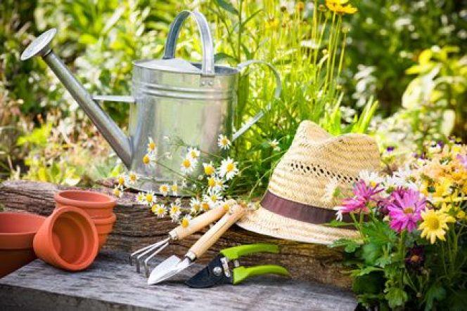Comment am nager un jardin en milieu aride ou sec - Amenager un jardin ...