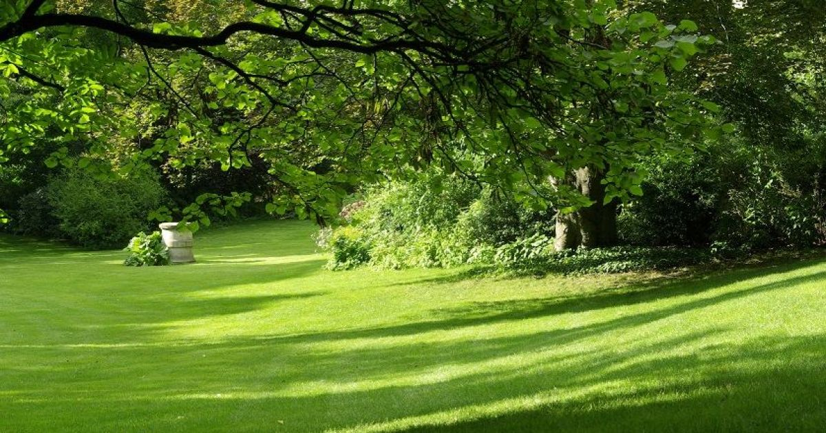 Comment am nager un jardin en pente for Amenager un jardin