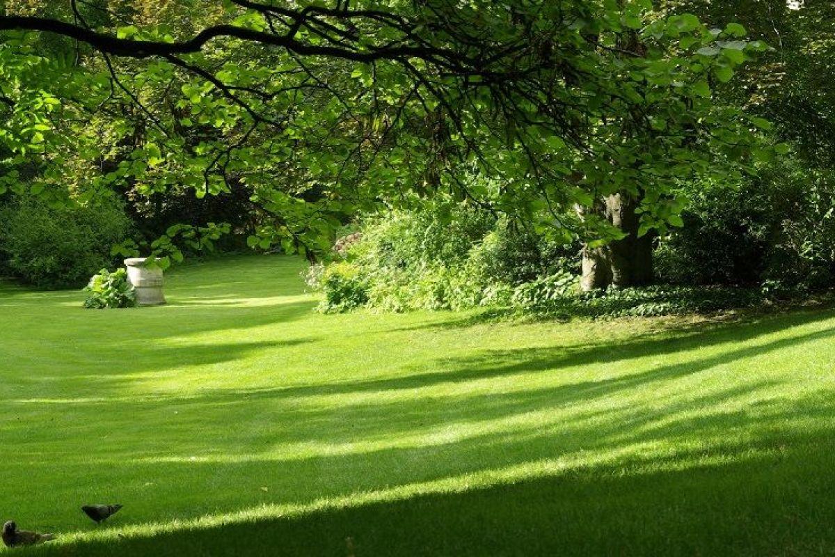 Comment Aménager Son Jardin En Pente comment aménager un jardin en pente ?