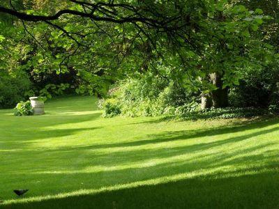 Comment aménager un jardin en pente ?