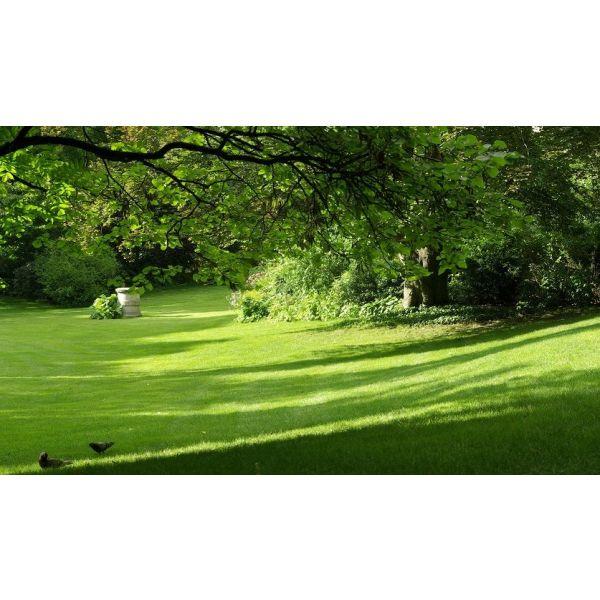 Comment am nager un jardin en pente - Amenager terrain en pente ...