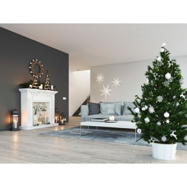 comment bien conserver son sapin de no l. Black Bedroom Furniture Sets. Home Design Ideas