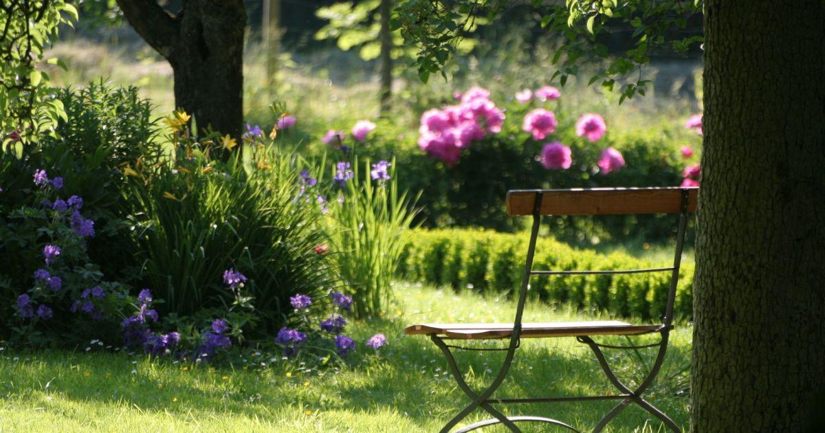 comment cr er un jardin l anglaise chez soi. Black Bedroom Furniture Sets. Home Design Ideas