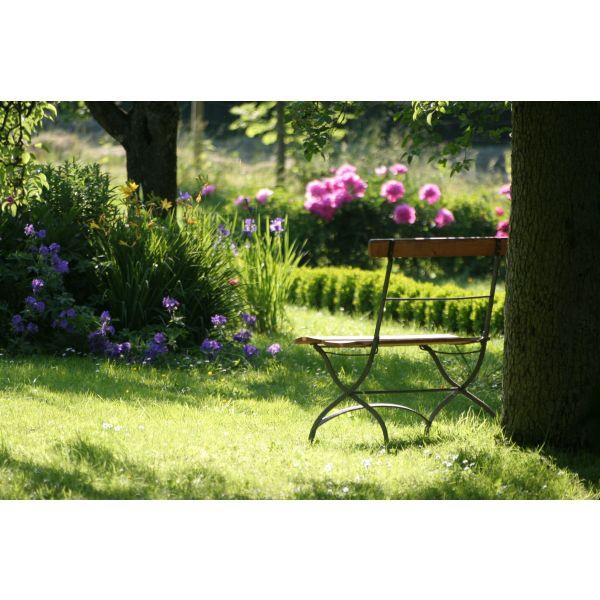 Comment cr er un jardin l anglaise chez soi for Creer son jardin anglais