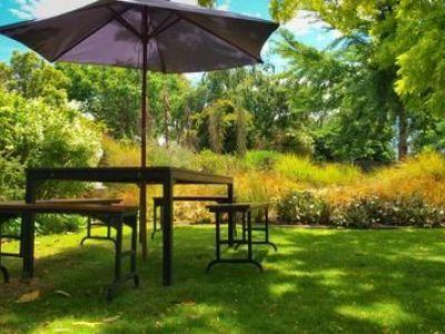 Comment entretenir une pelouse
