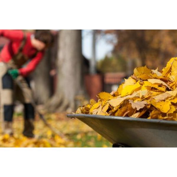 Comment utiliser les feuilles mortes au jardin - Comment utiliser le crottin de cheval au jardin ...