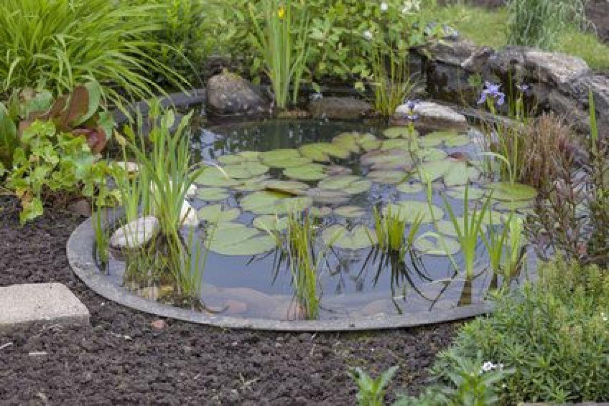 Bassin Préformé Hors Sol construction d'un bassin de jardin
