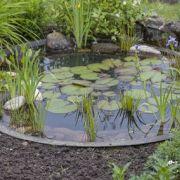 De a z am nagement de jardin potager fleurs arbres pelouses mobilie - Construction bassin de jardin ...