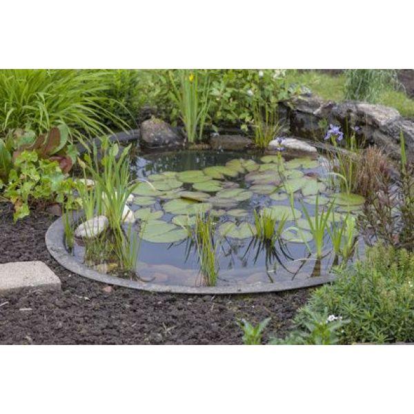 Construction d\'un bassin de jardin