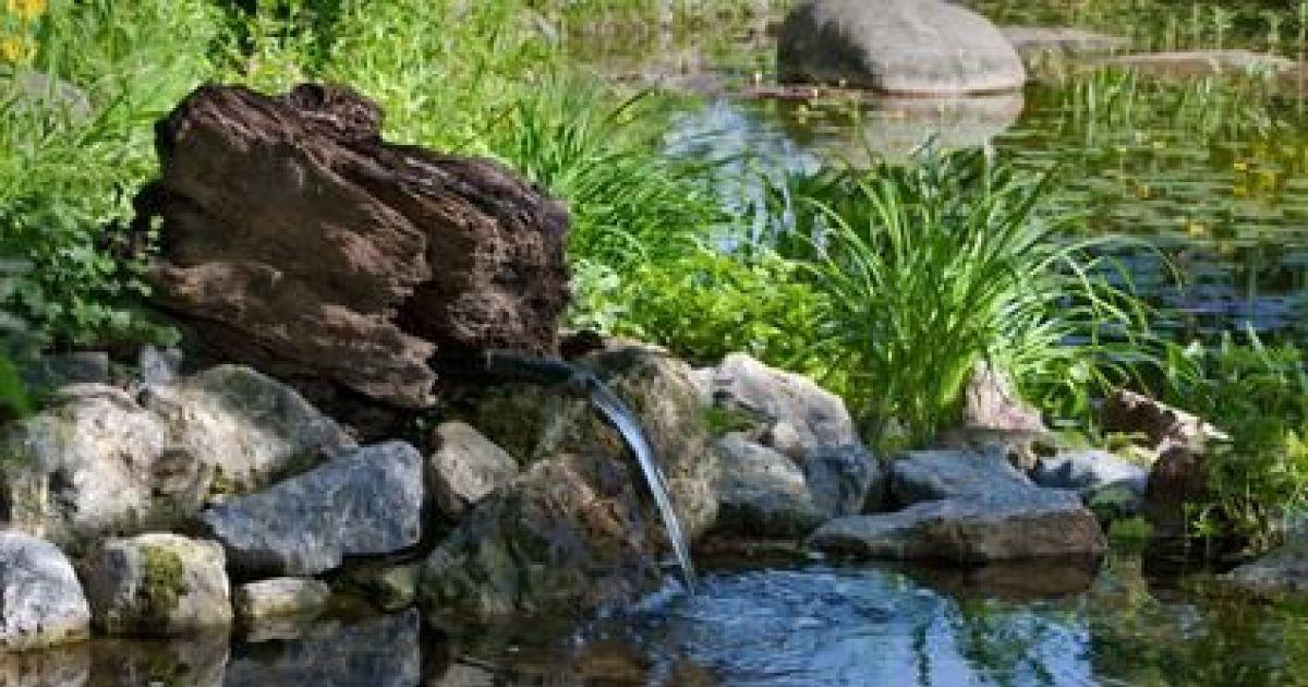 Cr er un jardin de rocaille conseils et astuces Jardin de rocaille photos