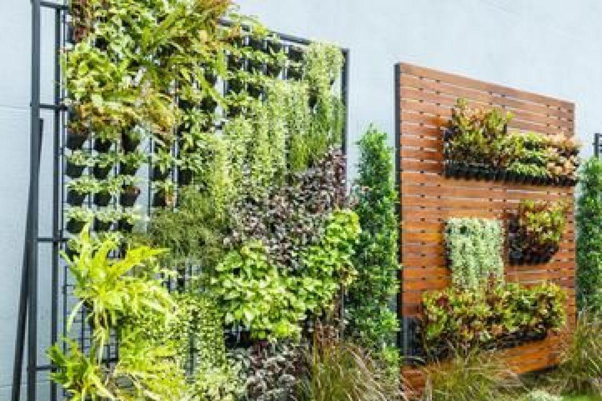 Mur Végétal Extérieur Palette créer un jardin vertical