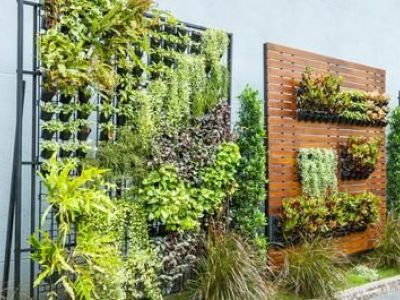 Créer un jardin vertical