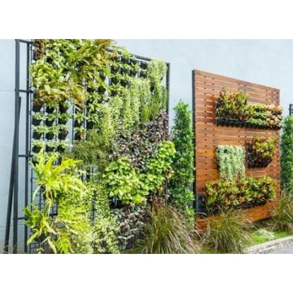 Cr er un jardin vertical for Creer son jardin