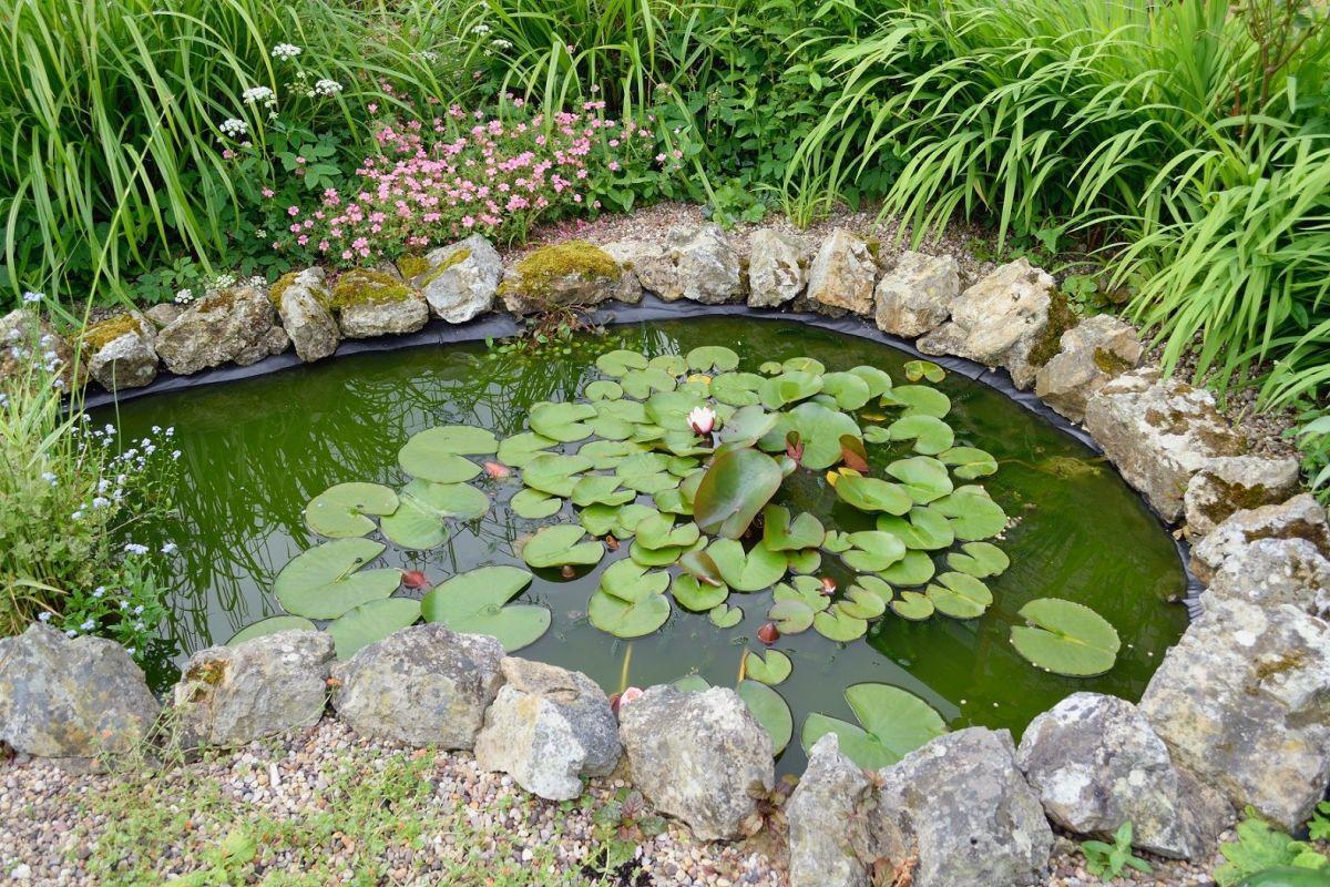 Comment Faire Un Petit Bassin Aquatique créer un mini bassin de jardin