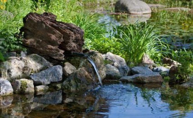 Créer un ruisseau de jardin