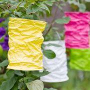 Créer une ambiance guinguette dans un jardin