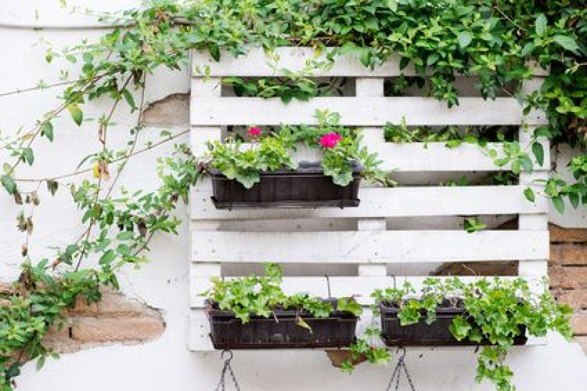 Transformation Palette En Jardiniere créer une jardinière grâce aux palettes de bois