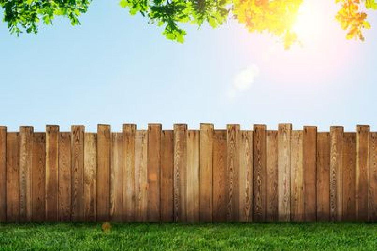 Se Cacher Des Voisins Dans Son Jardin délimiter et clôturer sa propriété : quelques idées