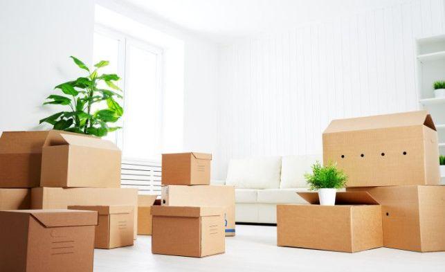 Déménagement : que faire de vos meubles le temps des travaux ?