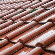 Démoussage toiture : comment enlever les mousses et lichens sur un toit?