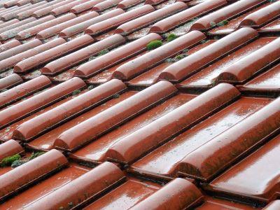 Démoussage toiture : comment enlever les mousses et lichens sur un toit ?