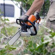 Déraciner et replanter un arbre