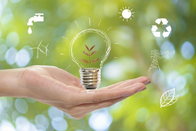 Des ampoules LED gratuites : 5 ampoules offertes pour tous les ménages