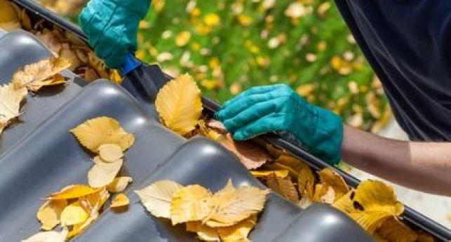Des feuilles peuvent rapidement s'accumuler dans une gouttière et la boucher