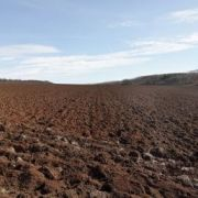 Déterminer la nature du sol : une étape importante avant l'achat d'un terrain