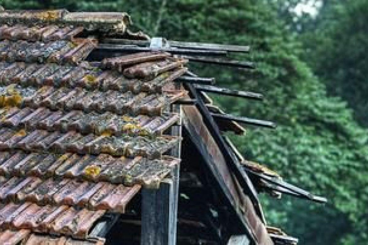 Refaire Un Toit D Abri De Jardin effondrement d'une toiture : que faire ?