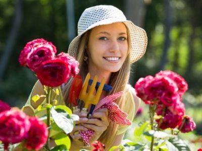 Entretenir un jardin en été