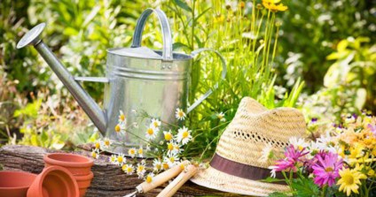 Entretien d'un jardin au printemps