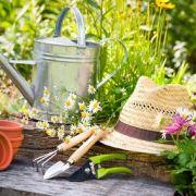 entretien jardin printemps