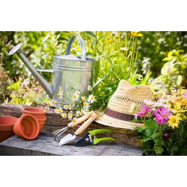 Entretien d un jardin au printemps for Nettoyage de jardin