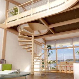 Notre sélection des plus beaux escaliers en colimaçon
