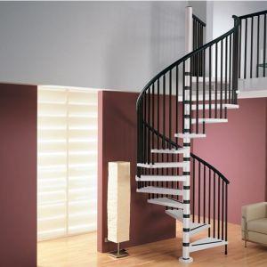 Escalier en colimaçon par Rintal