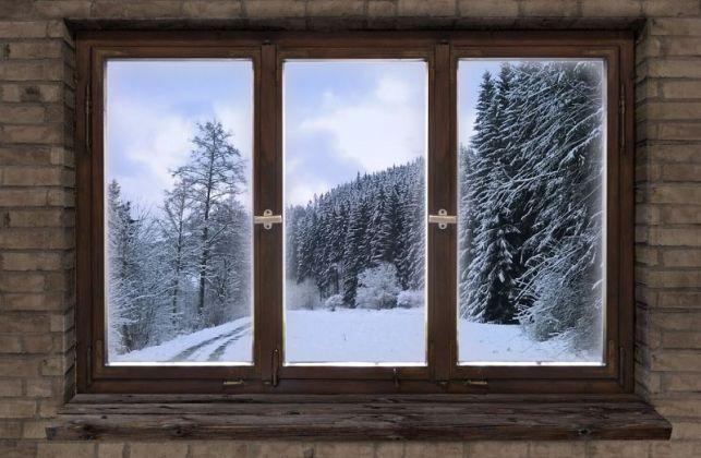 Fenêtre en bois pourri ou vermoulu : que faire ?