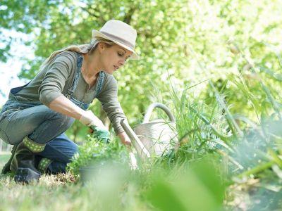 Jardin : le grand nettoyage de printemps
