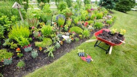 Jardin par style