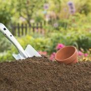L'apport en azote dans un sol de jardin