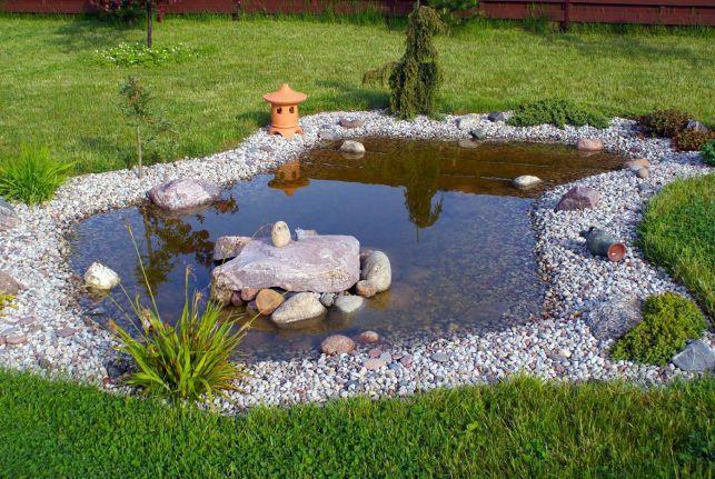 L'entretien d'un bassin de jardin